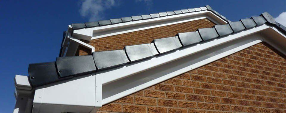 Fascia and soffit